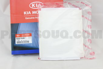 Hyundai / KIA P87901F200A AIR FILTER